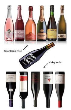 Wine: the reason I can make it through a long weekend with the family! Let's take a look at 20 of our favorite wines that'll go perfect with Thanksgiving and your weird uncle that you see twice a year. Family Weekend, Long Weekend, Wine Folly, Make It Through, Pinot Noir, Grocery Store, Wine Recipes, Wine Rack, Champagne