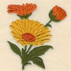 Calendula (Marigold) - 4x4 | Floral - Flowers | Machine Embroidery Designs | SWAKembroidery.com Starbird Stock Designs