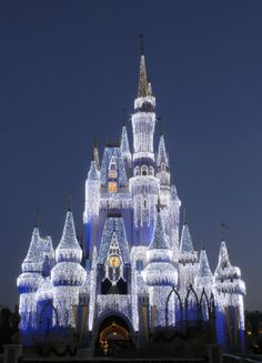 Walt Disney World, Orlando, Florida - Christmastime (We did Disneyland at Christmas - it was fun & beautifully decorated! Walt Disney World Orlando, Disney World Parks, Disney World Resorts, Disney Vacations, Dream Vacations, Disney Cruise, Dream Trips, Family Vacations, Family Travel