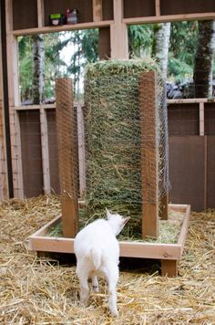 Square bale hay feeder for goats. This keeps the food off the ground as they ea… Square bale hay feeder for goats. This keeps the food off the ground as they ea… , - Monde Des Animaux The Farm, Mini Farm, Goat Hay Feeder, Diy Hay Feeder, Feeder Cattle, Goat Playground, Goat Shelter, Sheep Shelter, Goat Pen