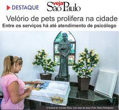"""Pet Memorial é o único crematório no estado dotado de """"Sistema de Monitoramento…"""