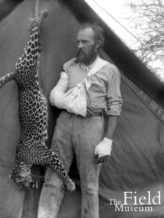 Carl Akeley with a bandaged arm and the dead leopard that he killed with his bare hands. Africa Expedition, 1896