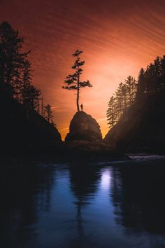 Cape Disappointment State Park by Andy Feliciotti