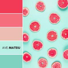 Pattern of grapefruit citrus slices on pastel backdrop. Color Palette #215   Ave Mateiu