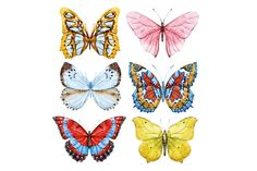 Watercolor butterflies +PNG!  by Lembrik's Artworks on @creativemarket
