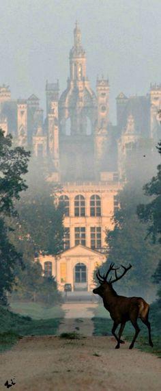 Traveling - Chateau de Chambord, France.