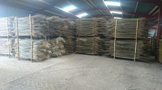 Dry willow being stored for sorting 2016