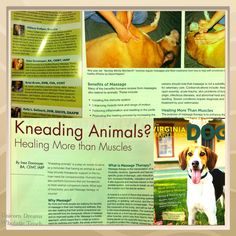 My first published article on animal massage in the Virginia-Maryland Dog magazine Inez Donmoyer from Unicorn Dreams Wholistic Touch  You can read it here:  http://issuu.com/thevirginiadog/docs/18694_va_dog_web?mode=window=%23222222
