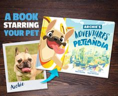 Petlandia is where pets and pop culture collide. Where cats dream of online stardom, rottweilers rack up likes, shih tzus snap selfies and pugs pose. Best of all any real life pet can become a star