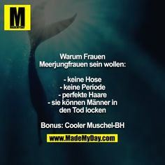 Bei mir kommt hinzu: Fish are the better people, no dummes Gelaber of . Live Quotes For Him, Life Is Too Short Quotes, Positive Quotes For Life, Funny Quotes About Life, Love Yourself Quotes, Long Inspirational Quotes, Life Quotes Family, Funny Motivation, Deep