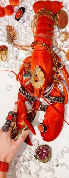 Lobster Feast, Lobster Party, Love And Light, Floral, Abundance, Happiness, Lifestyle, Bonheur, Flowers