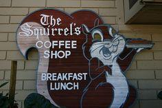 The Squirrel's Coffee Shop by jasonshellen, via Flickr