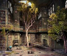 Neat library in a creepy kind of way--lol