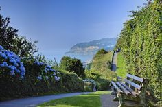 Cliff top path, Shanklin, Isle of Wight