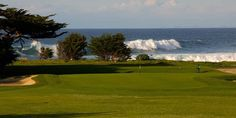 Pacific Grove Golf Links in Pacific Grove, CA ($25-62)