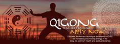108 Hour Qigong Teacher Certification (Organ Qigong) March 2015 in Bali with white tiger qigong Maybe?