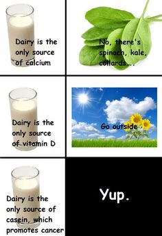 Pro vegan: diary is not the best source for calcium or vitamin D because dairy contains casein, which promotes cancer. Try getting a little sunshine and a plant based diet.
