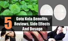 Gotu Kola Benefits, Reviews, Side Effects And Dosage Gotu Kola Benefits, Health Benefits, Homeopathic Remedies, Natural Remedies, Prostate Cancer, Herbal Medicine, Side Effects, Plant Based, Health And Wellness