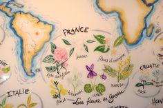 Grasse Perfume Factories in the French Riviera | Vino Con Vista ...