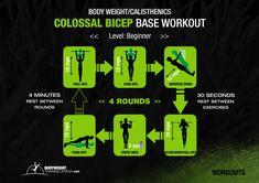 Beginner - Colossal Bicep Base Workout | bodyweighttrainingarena.com #workouts #bodyweight