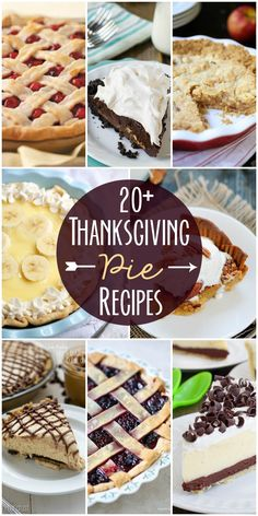 20+ Delicious pie recipes perfect for thanksgiving!! See it on { lilluna.com }