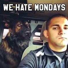 #K9 #Police so true!!