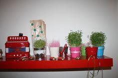 γιαουρτοπόταμος: μπομπονιέρες γλαστράκια Planter Pots, Blog, Blogging