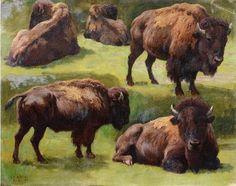 Georges Frédéric Rötig (1873-1961) - Studies of a Bison, oil on canvas, 26,5 x 33 cm.