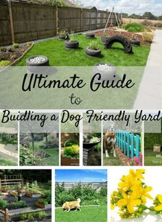 Tips for building a dog-friendly garden stop your dog from digging out your flower beds and building a sensory garden. Tips for building a dog-friendly garden stop your dog from digging out your flower beds and building a sensory garden. Dog Friendly Backyard, Dog Backyard, Backyard Landscaping, Dog Friendly Plants, Landscaping Ideas, Training Your Dog, Training Tips, Potty Training, Agility Training