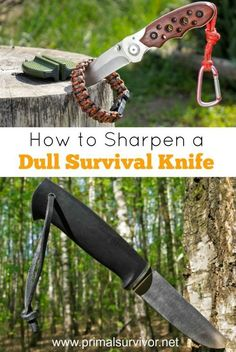 When it comes to survival tactics and gear, there is little that survivalists can agree on. But there is one thing that all survivalists all say for certain: You need a survival knife in with your supplies.But a dull survival knife isn't going to do you much good. One smart solution is to always carry a sharpening stone with you in your survival supplies. But, if you find yourself in the bush and need to sharpen your blade, you can use this little-known method for sharpening your knife.