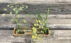 Raku, din nou! Kenzanele incap perfect in el. Raku Pottery, Plants, Plant, Planets