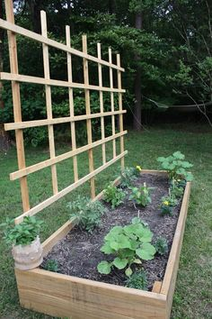 Raised Bed With Trellis