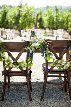 vineyard wedding chair decor | Photo by Megan Clouse
