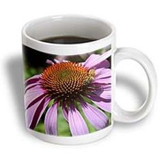 ($14.99) Bees and Flowers- Pink Echinacea Flower- Floral Photography - 15oz Mug From 3dRose LLC