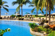 Let us help you plan the perfect vacation in Riviera Nayarit. Find all inclusive packages, deals, special offers, and vacation packages. All Inclusive Packages, Vacation Packages, Riviera Nayarit, Hacienda Style, Destinations, Resort Spa, Beach Resorts, Hotel Offers, Mexico