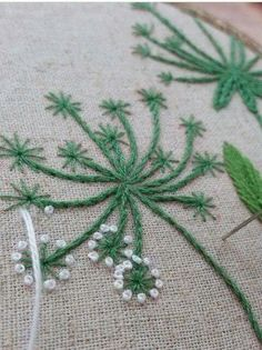 Green with white French knots. Lacecap flowers