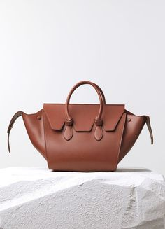 Medium Trapeze Handbag Multicolour in Smooth Calfskin - Fall / Winter Collection 2014 | CÉLINE