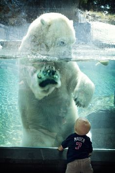 mystic-revelations:  Baby & Polar Bear (by Official San Diego Zoo)