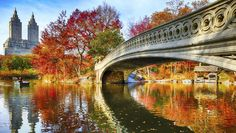Autumn is the perfect time to visit the Big Apple. Here are the best ways to stay, play and see the sights #escapesnaps