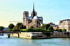 Notre Dame along the Seine in Paris, France. I love travel photos.