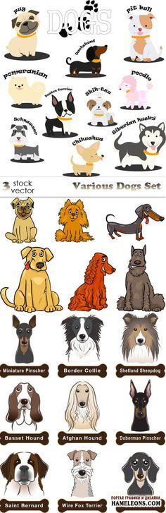 Собаки разных пород в векторе   Dogs vector