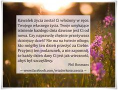 https://www.facebook.com/wiaderkoszczescia/photos/a.407970609263194.95333.407961409264114/775169305876654/?type=1