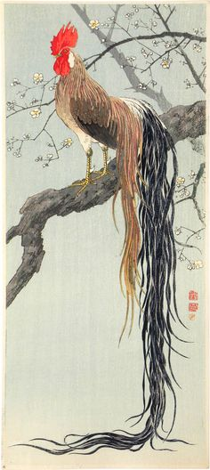 unknown artist, Onagadori (long-tailed chicken) in Plum Tree, woodblock print, ca. 1933 The annals of art impresario and art star … Chicken Painting, Chicken Art, Chicken Humor, Chinese Painting, Chinese Art, Japanese Prints, Japanese Art, Rooster Art, Rooster Painting