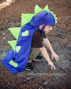 Kids Dinosaur Costume for Birthday Gift- includes scales & 3D spikes Dino party. $40,00, via Etsy.