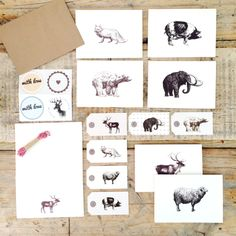 A gorgeous boxed set of mixed stationery. The set contains 6 notecards, 6 sheets of notepaper, 6 gift tags, 8 stickers, 12 envelopes and a roll of bakers twine. Beautiful images and quality paper make this a must have for stationery lovers.
