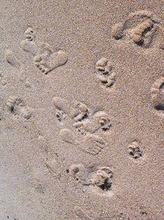 Footprints in the sand  #Thailand #Samui #sand