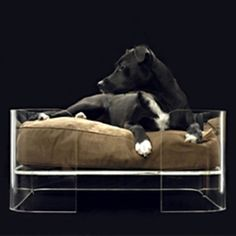 WOWBOW Dog Bed