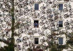 :) bike wall