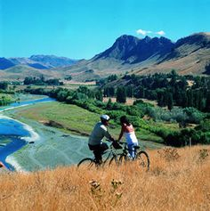 An amazing winery near the foothills. Transition Town, Havelock North, Bay News, The Beautiful Country, South Island, British Isles, Cousins, Kiwi, New Zealand
