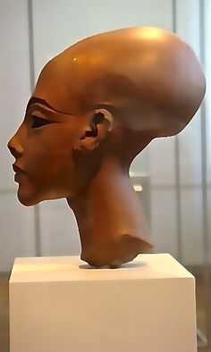 One of the daughters of Akhenaten and Nefertiti, this is probably the oldest, Meritaten. She and her sisters, Nefertiti (who was also Akhenaten's half-sister) and Akhenaten are all depicted with this shaped skull.